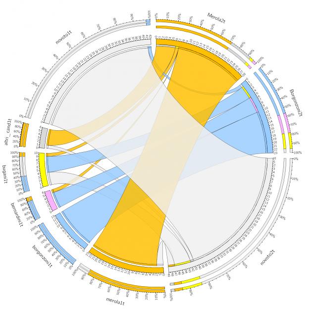 flussi bologna cise 630x630 Amministrative 2016: tutti i numeri (2)